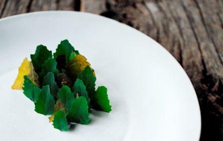 Tartar de cervo - Foto Araceli Paz